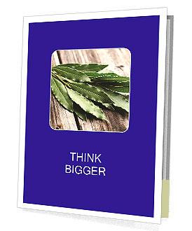 0000091156 Los folletos de presentación