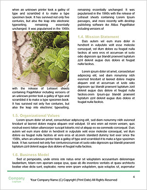 0000091171 Word Template - Page 4