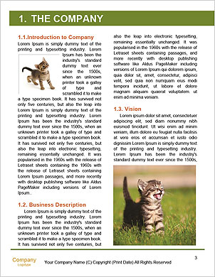 0000091182 Word Template - Page 3
