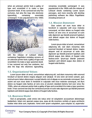 0000091188 Word Template - Page 4