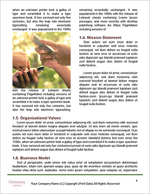 0000091209 Word Template - Page 4