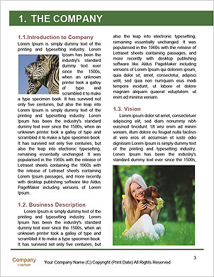 0000091212 Word Template - Page 3