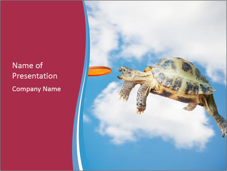 Turtle jumps PowerPoint Template