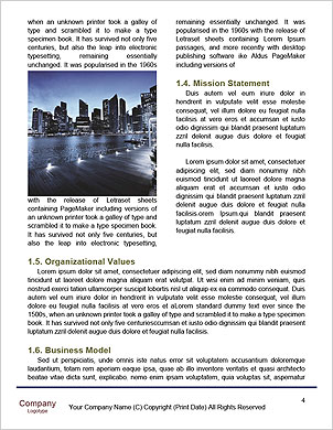 0000094776 Word Template - Page 4