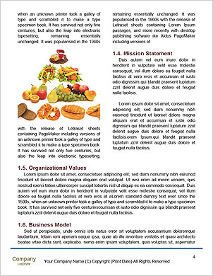 0000096453 Word Template - Page 4