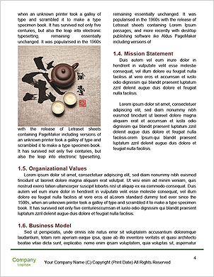 0000097641 Word Template - Page 4
