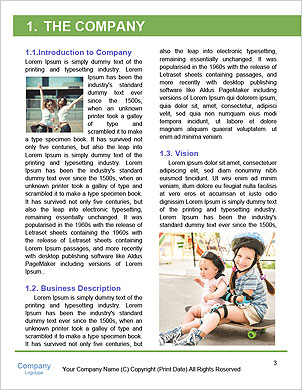 0000097768 Word Template - Page 3