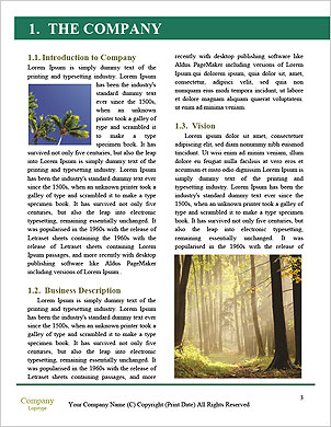 0000097815 Word Template - Page 3