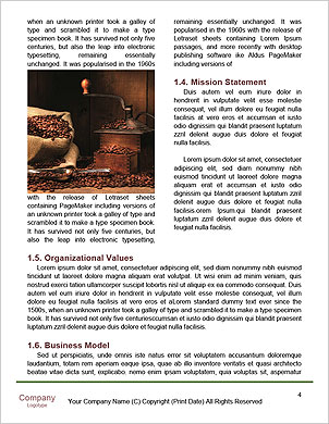 0000097828 Word Template - Page 4