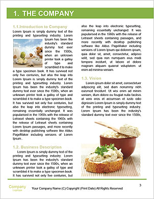 0000097851 Word Template - Page 3
