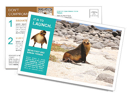 0000097934 Почтовые открытки