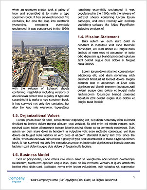 0000098319 Word Template - Page 4