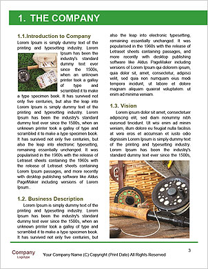 0000098341 Word Template - Page 3