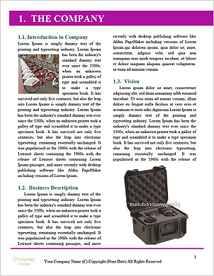 0000098370 Word Template - Page 3