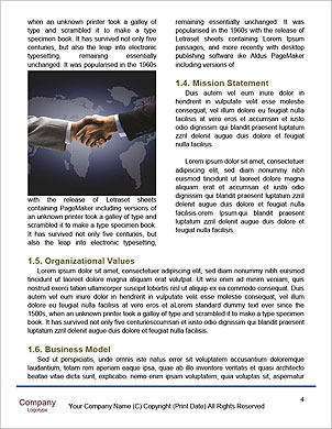 0000098446 Word Template - Page 4