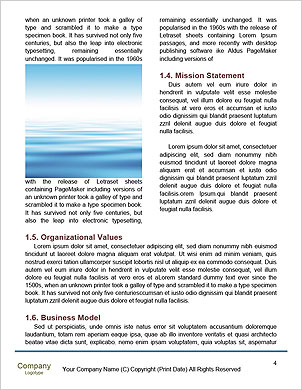 0000098496 Word Template - Page 4