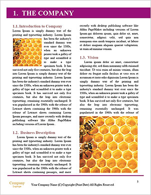 0000098507 Word Template - Page 3