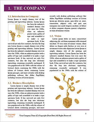 0000098534 Word Template - Page 3