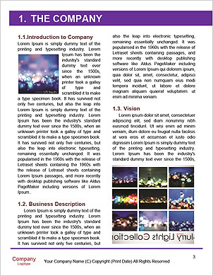 0000098550 Word Template - Page 3