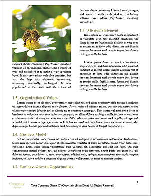 0000098616 Word Template - Page 4